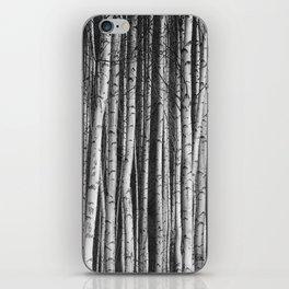 Birch || iPhone Skin
