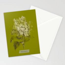 Hydrangea on Moss Cloud Stationery Cards