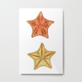 Carved Asterias or Mince-Pie Star Fish  from The Naturalists Miscellany (1789-1813) by George Shaw ( Metal Print