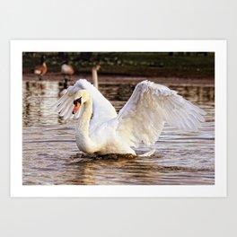 Elegant Swan Art Print