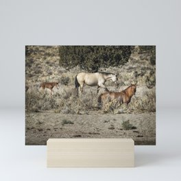 Safeguard This Tiny Foal Mini Art Print