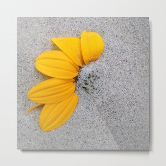 Sunflower in the Sand Metal Print