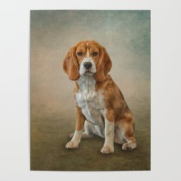 Drawing Dog Beagle Poster