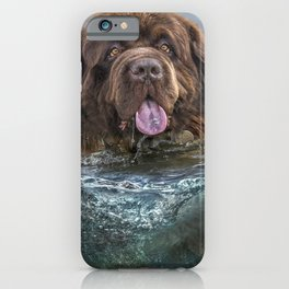 Majestic Newfoundland Dog Swimming Ultra HD iPhone Case