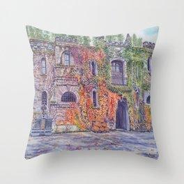 Chateau Montelena Napa Valley Throw Pillow