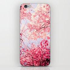 Color Drama I iPhone Skin