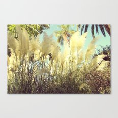 shine  Canvas Print