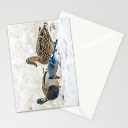 Share and share alike Stationery Cards