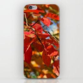 Flaming Foliage iPhone Skin