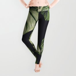 Monstera Madness Leggings