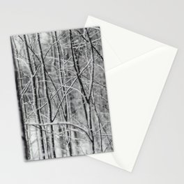 Winter gris Stationery Cards
