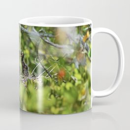 Yellow-crowned Night Heron Babies I Coffee Mug
