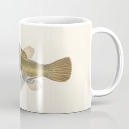 Naturalist Pufferfish Coffee Mug
