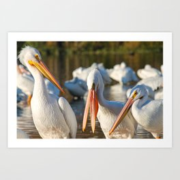 Three Birds Walk Into A Bar Art Print