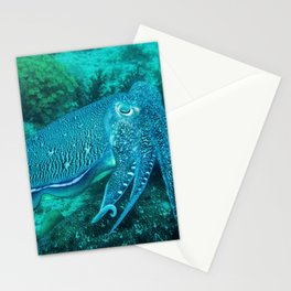 Cuttlefish Mating Dance Stationery Cards