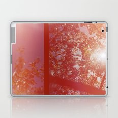 burst Laptop & iPad Skin