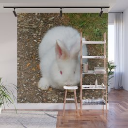 Fluffy white bunny Wall Mural
