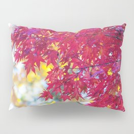 Maple in the Fall Pillow Sham