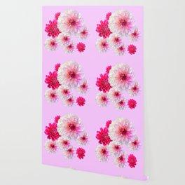 FUCHSIA CERISE-WHITE DAHLIA FLOWERS GARDEN ART Wallpaper