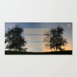 Day' N Nite Canvas Print