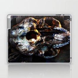 Buffalo Point Laptop & iPad Skin