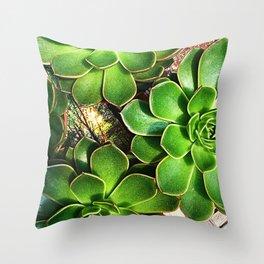 3 Succulents Throw Pillow