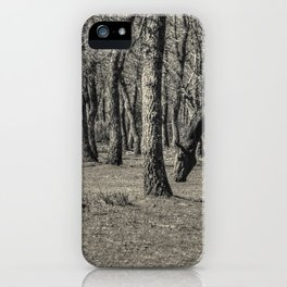 The horse and the oaks iPhone Case