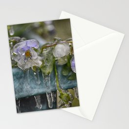 Pansies on Ice Stationery Cards