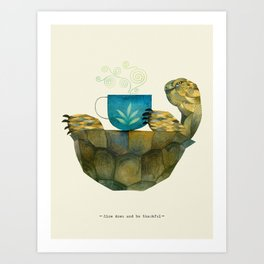 wise tortoise Art Print