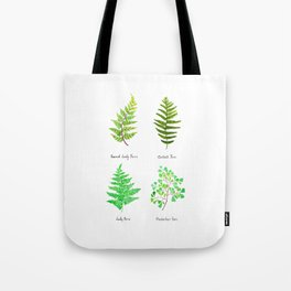 fern collection watercolor Tote Bag