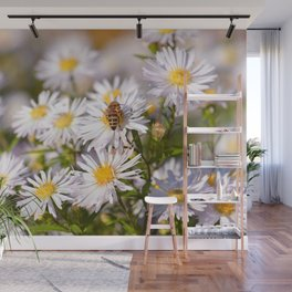 Daisy Flowers 0187 Wall Mural