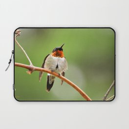 Hummingbird XVII Laptop Sleeve