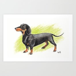 Dachshund (includes rescue donation!) Art Print
