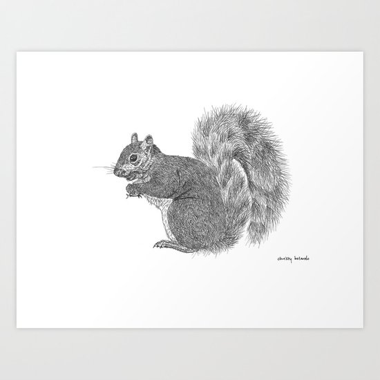 Gray Squirrel by thesweetbel