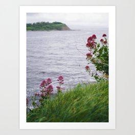 Irish Seaside II Art Print