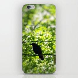 Black Bird Summer Green Tree iPhone Skin