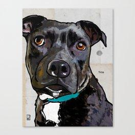 Dog: Staffordshire Bull Terrier Canvas Print