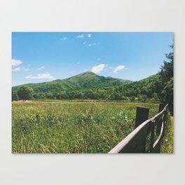 Roan, NC •Appalachian Trail Canvas Print