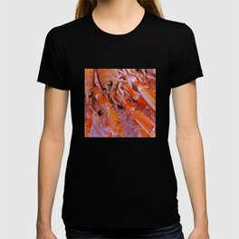 Gourmet Shrimp T-shirt