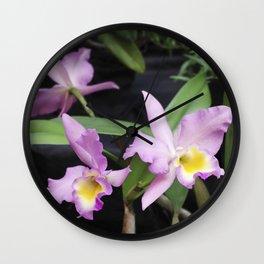 Cattleya Horace Maxima Orchid Wall Clock