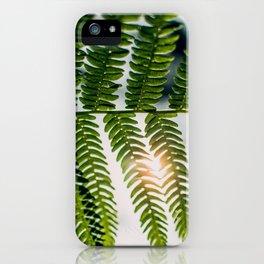 Fern Golly iPhone Case