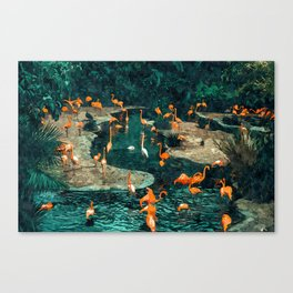 Flamingo Creek #flamingo #tropical #illustration Canvas Print