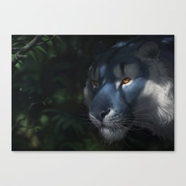 Brilliance Canvas Print