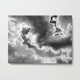 178 | austin Metal Print