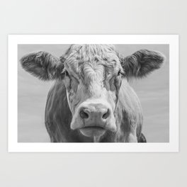 Animal Photography | Highland Cow Portrait Black and White | Farm Animals Art Print