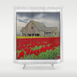 RED TULIPS AND BARN SKAGIT FLATS Shower Curtain