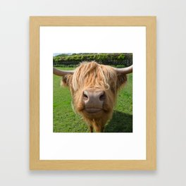 Highland cow nose Framed Art Print
