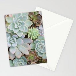 SUCCULENTS ARRANGEMENT I Stationery Cards