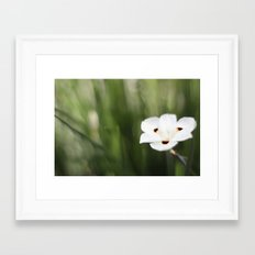 An Flower Framed Art Print