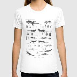 1857 Diagram Zoology: Reptiles T-shirt